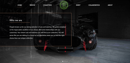 Web Design company created page with online payment system for website of Welten Exotics